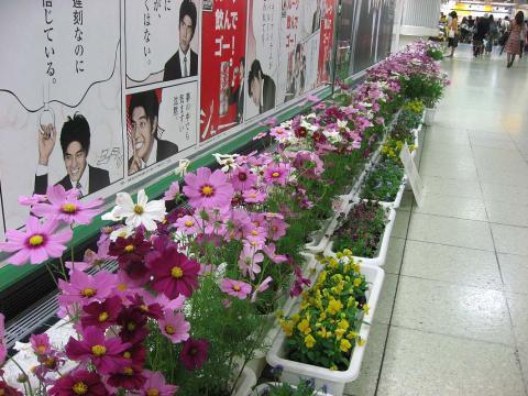 071008_shinjuku1.jpg