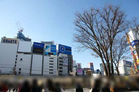 080103_hanazono0.jpg