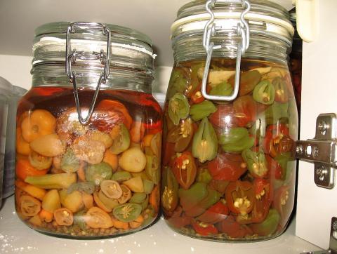 pickles081100.jpg