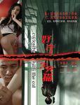 中国映画 劉嘉玲 胡軍 宋佳