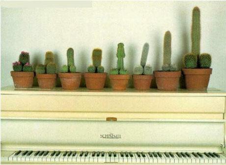 ピアノの腕前が瞬時に上がる画像