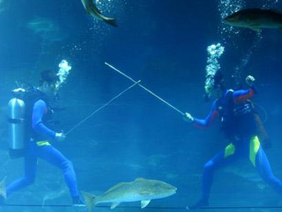 underwater-olympic01.jpg