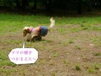 20060507013620.jpg