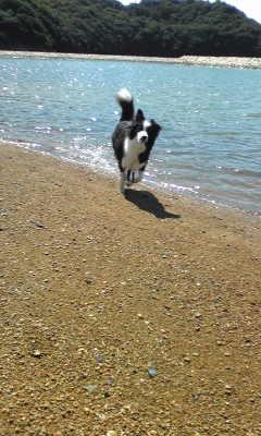 海で遊んだ2