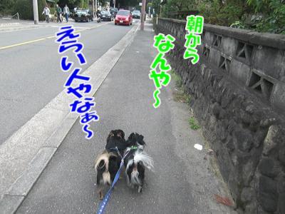 CIMG0272.jpg