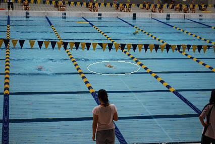 DSC_0317 背泳ぎ?