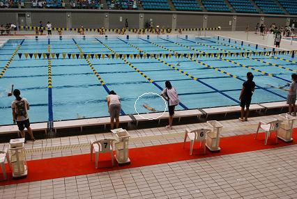 DSC_0325背泳ぎ?