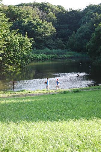 DSC_0422 1313鴨池公園?