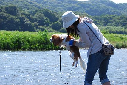 DSC_0532 犬かき