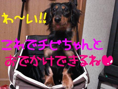 DSC01191.jpg