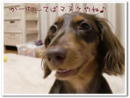 oz_YZiGg.jpg