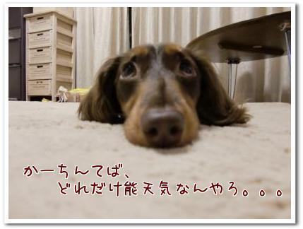 u_Z_sEk4.jpg