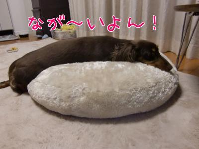 yV4DJCdW.jpg