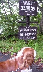 2008_0907画像0011琵琶池1