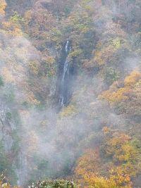 2008_1027画像0025八滝