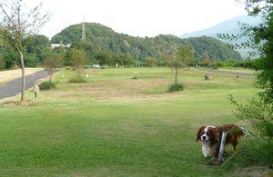 P1000285公園