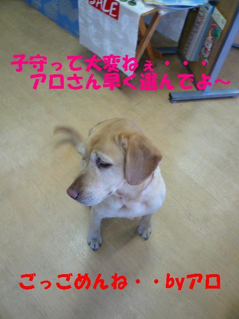 2009-2-12ナル4