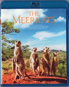 Blu-ray THE MEERKATS -1