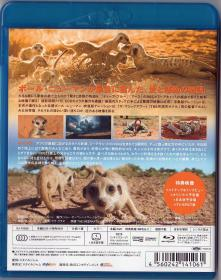 Blu-ray THE MEERKATS -2