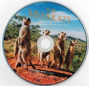 Blu-ray THE MEERKATS Disc