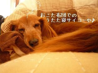 P1000204blog.jpg