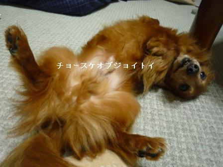 P1010895blog.jpg