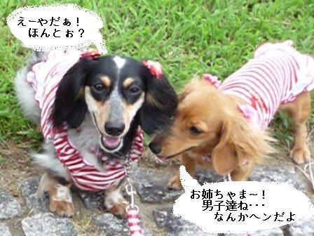 P1020435blog.jpg