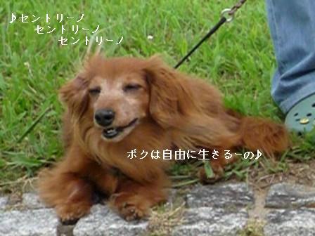 P1020468blog.jpg