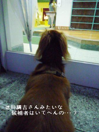 P1030278blog.jpg