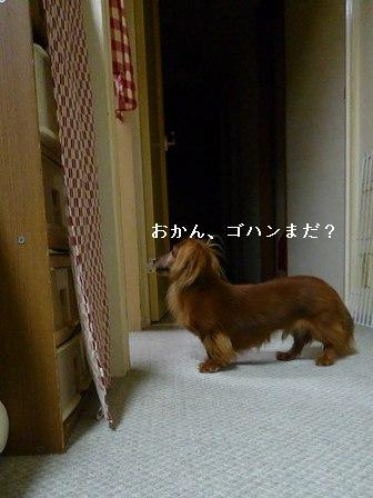 P1030319blog.jpg