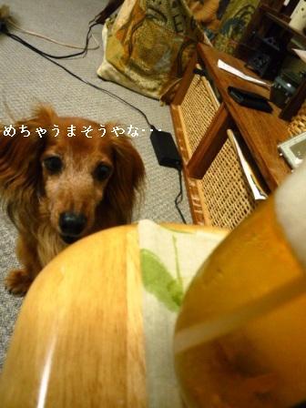 P1030329blog.jpg