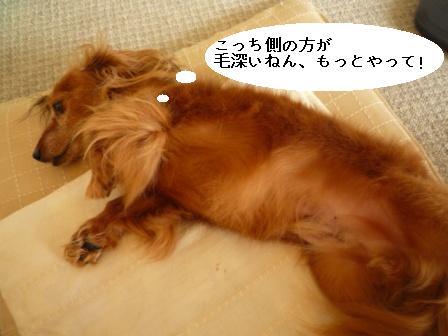 P1030649blog.jpg