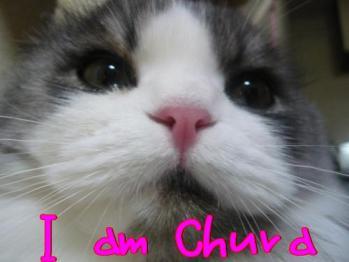 chura077
