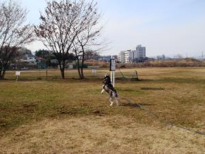 2012010106.jpg