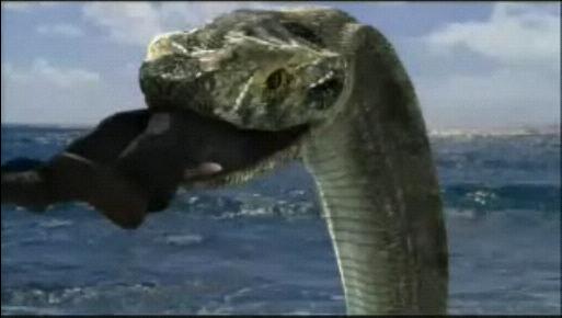 コモドVSキングコブラ コブラ