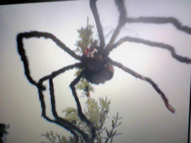 モンスターアイランド (クモ蜘蛛