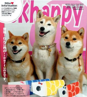 CKhapp0ye_migi1.jpg
