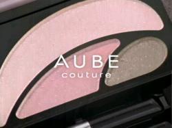 AIB-Aube0801.jpg