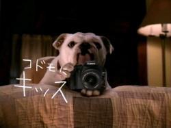 EOS-Canon0803.jpg