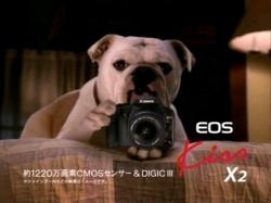 EOS-Canon0804.jpg