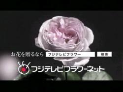 MEL-Flower0805.jpg