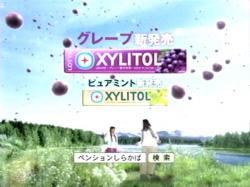 NAK-XYLI0805.jpg
