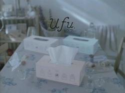 Sonin-Ufu0905.jpg
