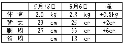 nuts身体測定-1