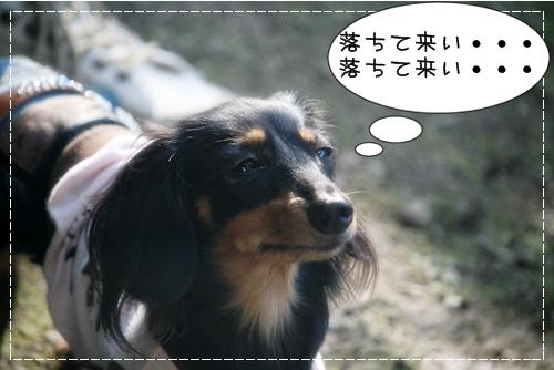 kissD-1013-21.jpg