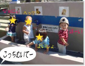 photo_45.jpg