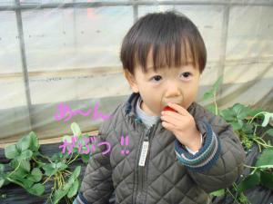 photo_50.jpg