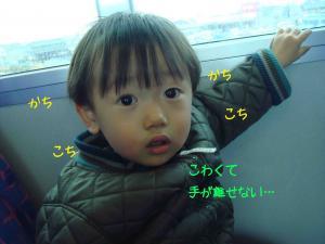 photo_54.jpg