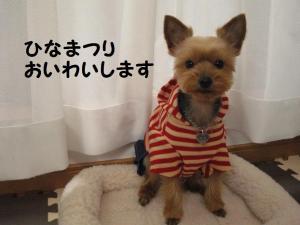 20090303hinamatsuri3