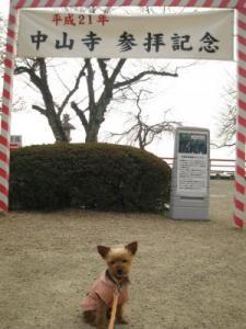 20090316nakayama9